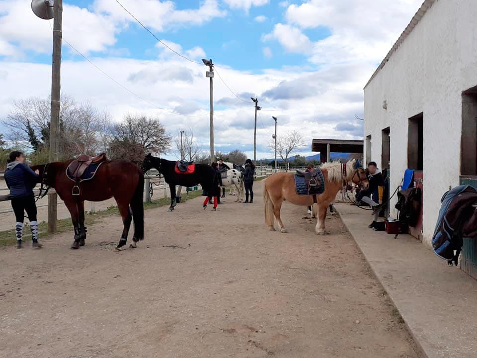 Centre d'équitation